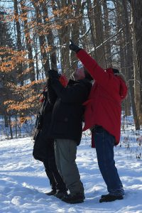 Photograph of birders pointing to a bird during a CBC