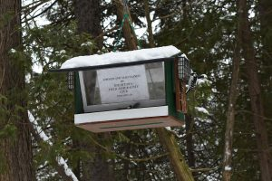 OFNC feeder at the Jack Pine Trail