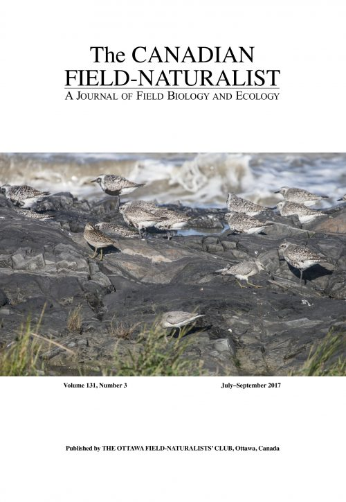 Cover of The Canadian Field-Naturalist Volume 131, number 3