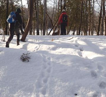 Photo of Macoun Club members following Porcupine tracks in the snow