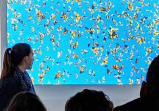Photo of Macoun Club speaker Genevieve Leroux and slide of Monarch butterflies in flight