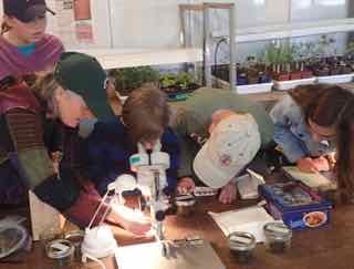 Photo of bryologist Jennifer Doubt showing Macoun Club members what to see in mosses under the microscope