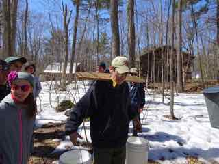 Photo of Rob Lee carrying maple sap with a yoke