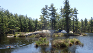 Photo of Macoun Club camp on Pakenham Hills beaver pond