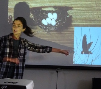 Macoun Club speaker Melanie Farquhar with images of her subject, a Chimney Swift and nest inside artificial chimney