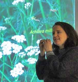 Photo of botanist Jen Line with picture of Yarrow