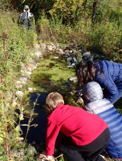 Macoun Club members leaning in to see into a Fletcher Wildlife Garden pond