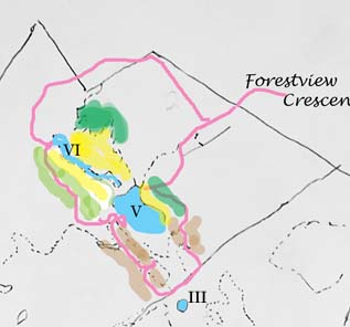 Sketch map partly coloured in to represent vegetation types in the NE corner of the Macoun Club study area