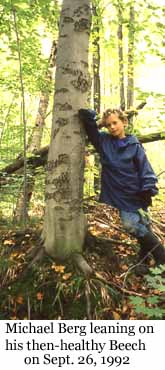 Photo of Macoun Club member Michael Berg with his American Beech study tree