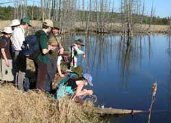 Photo of Macoun Club members approaching a beaver pond