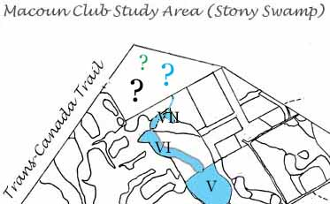 Outline map of unknown corner of Macoun Club Study Area