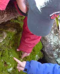 Photo of Macoun Club members feeling soft moss over rock