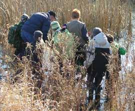 Photo of Mike Leveillé taking Macoun Club group into the Macoun Marsh