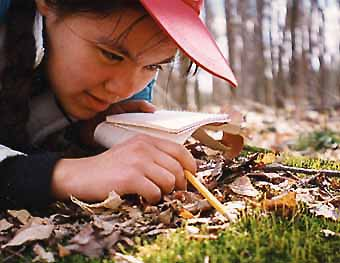 Photo of Macoun Club member examining moss clump