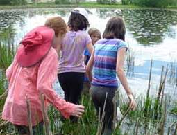 Photo of Macoun Club members hurrying into a marshy pond