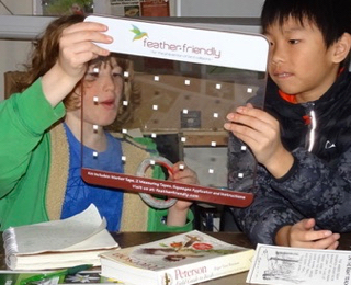 Photo of Macoun Club boys examining sample of window glass rendered safe for birds with pattern of dots
