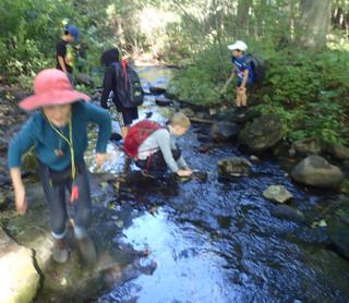 Photo of Macoun Club members exploring a streambed