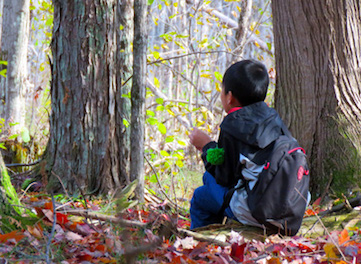 Photo of Macoun Club member sitting quietly in a sunny woods