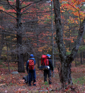 Photo of Macoun Club member and his father, wearing backpacks, in the autumn forest