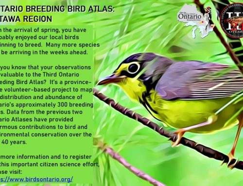Ontario Breeding Bird Atlas III: Ottawa Region