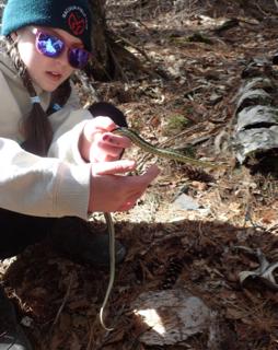 Photo of Macoun Club member holding an early-spring Garter Snake