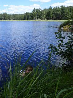 Photo of Macoun Club member swimming along a marshy lakeshore