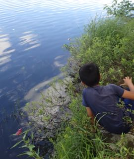 Photo of Macoun Club boy by a wild lakeshore watching a snake eat a fish it has caught